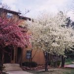 boulder_creek_community_44241