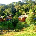 ecovillage_viver_simples_44891