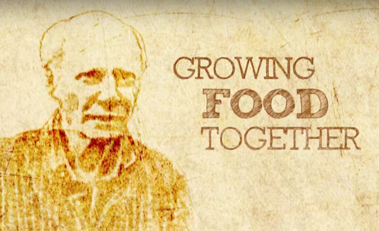 Within Reach Growing Food Together