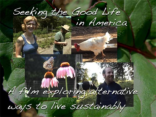 Seeking the Good Life DVD